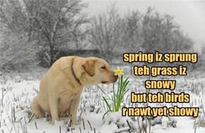 Ode To An Unending Winter