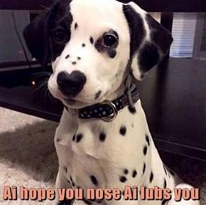 Ai hope you nose Ai lubs you