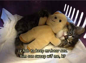 iz hab to keep mr.bear sav. him can sweep wif me, k?