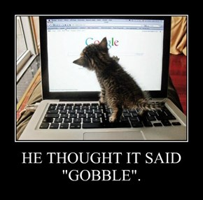 "HE THOUGHT IT SAID ""GOBBLE""."