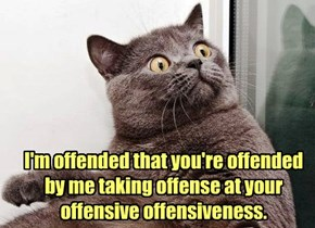 Did That Offend You?