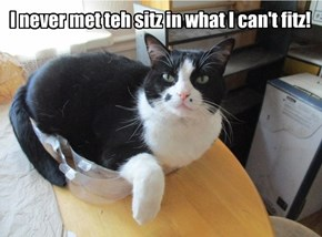 I never met teh sitz in what I can't fitz!