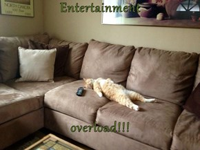 Binge Watching TV Shows Really Takes It Out Of You.