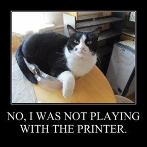 NO, I WAS NOT PLAYING WITH THE PRINTER.