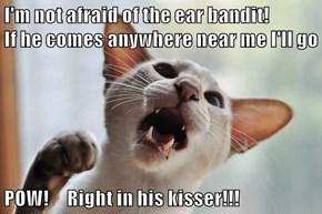 I'm not afraid of the ear bandit!                        If he comes anywhere near me I'll go  POW!     Right in his kisser!!!