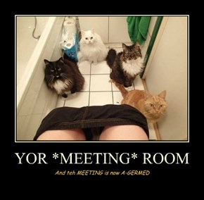 YOR *MEETING* ROOM