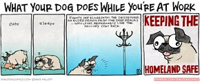 Dogs, So Brave