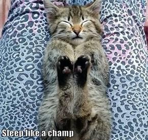 Sleep like a champ