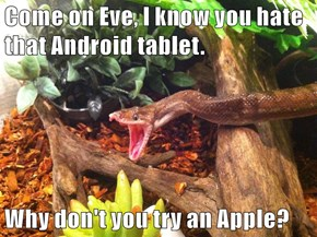 Come on Eve, I know you hate that Android tablet.  Why don't you try an Apple?