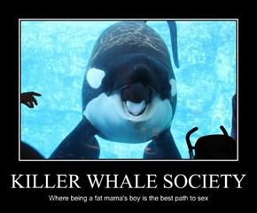 KILLER WHALE SOCIETY