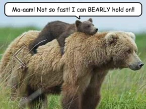 Ma-aam! Not so fast! I can BEARLY hold on!!