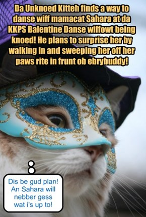 Da Unknoed Kitteh plans to go to da KKPS Balentine Danse!