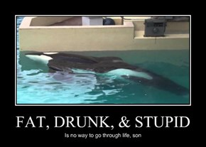 FAT, DRUNK, & STUPID