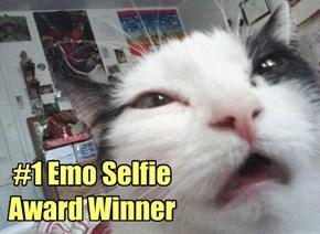 #1 Award Winner