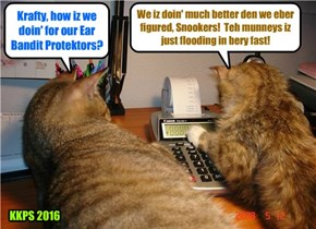 As Snookers looks on, Krafty totals up the sales on the Krafty and Snookers Ear Bandit Protektors and is very pleased to see such large numbers!