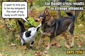 Ear Bandit crisis results in strange alliances.