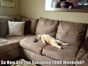 So How Are You Spending YOUR Weekend?