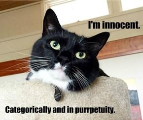 I'm innocent.