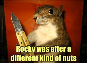 When Squirrels Go Bad