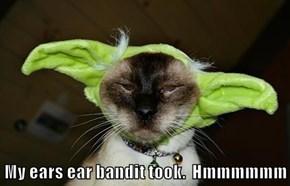 My ears ear bandit took.  Hmmmmmm