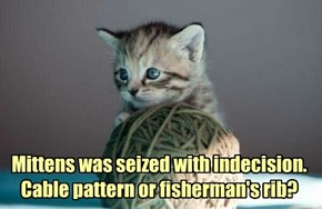Mittens was seized with indecision. Cable pattern or fisherman's rib?