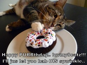→ Happy PURRthday.. luvmy8catz!!! I'll jus let yoo hab DIS spwinkle..