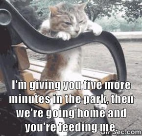 I'm giving you five more minutes in the park, then we're going home and you're feeding me.