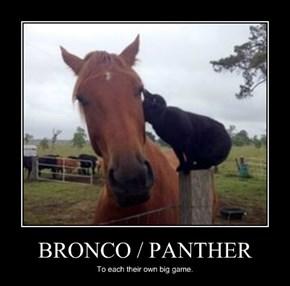 BRONCO / PANTHER
