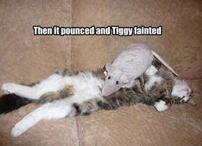 Then it pounced and Tiggy fainted
