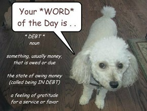 Nugget found out there are adults whom do NOT know the MEANING of the word, DEBT. Let's TEACH them!