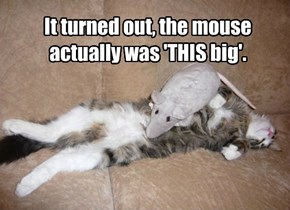 It turned out, the mouse actually was 'THIS big'.
