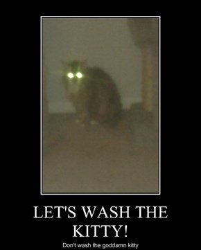 LET'S WASH THE KITTY!