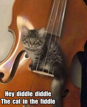 Hey  diddle  diddle The  cat  in  the  fiddle