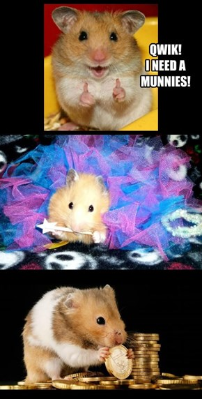 When You Wish Upon A Hamster