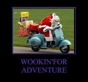 WOOKIN'FOR ADVENTURE