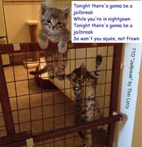 """Furry Escape"" (TTO ""Jailbreak"" by Thin Lizzy)"