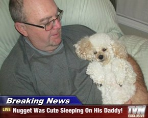 Breaking News - Nugget Was Cute Sleeping On His Daddy!
