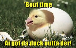 'Bout time  Ai got da duck outta der!