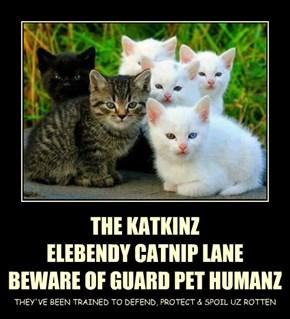 THE KATKINZ ELEBENDY CATNIP LANE BEWARE OF GUARD PET HUMANZ