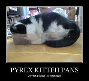PYREX KITTEH PANS