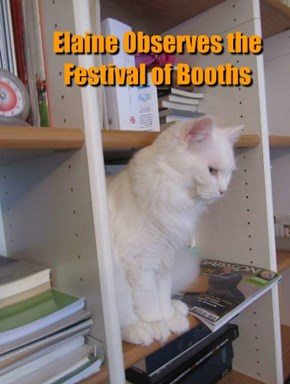 Elaine Observes the Festival of Booths