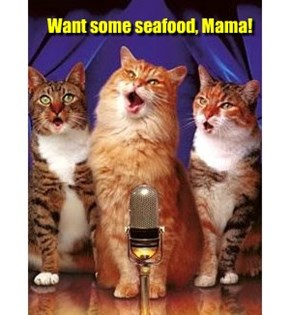 Want some seafood, Mama!