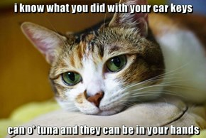 i know what you did with your car keys  can o' tuna and they can be in your hands