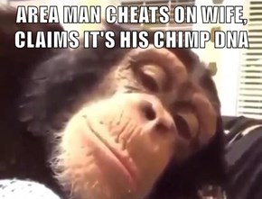 AREA MAN CHEATS ON WIFE, CLAIMS IT'S HIS CHIMP DNA