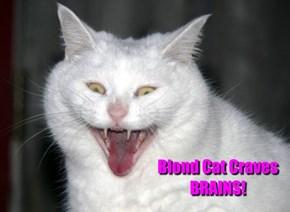 Blond Cat Craves BRAINS!