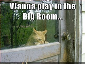 Wanna play in the                 Big Room...