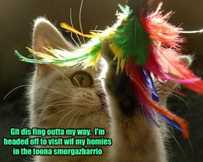 Git dis fing outta my way.  I'm headed off to visit wif my homies in the toona smorgazbarrio