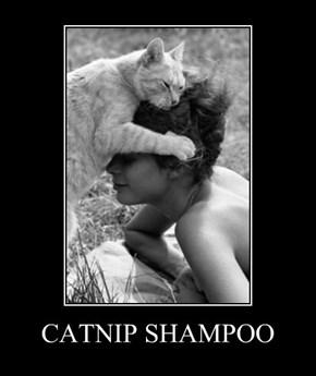 CATNIP SHAMPOO