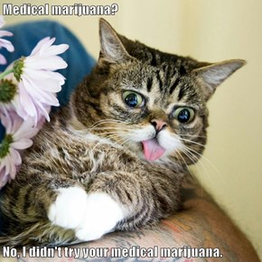 Medical marijuana?  No, I didn't try your medical marijuana.