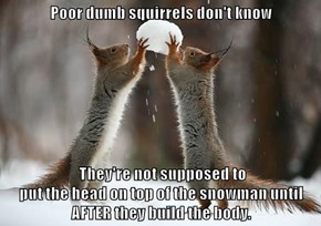 Poor dumb squirrels don't know   They're not supposed to                                                             put the head on top of the snowman until AFTER they build the body.